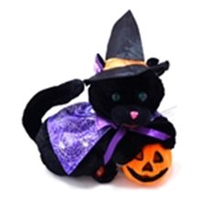 Picture for category Halloween Toys