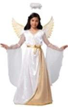 Picture for category Angel & Devil Costumes
