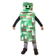 Picture for category Minecraft Costumes