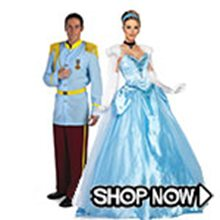 Picture for category Cinderella Couple Costumes