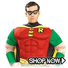 Picture for category Robin Costumes