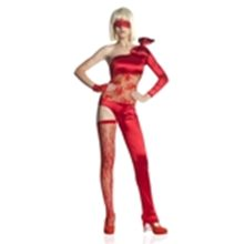 Picture for category Lady Gaga Costumes