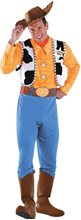 Picture of Toy Story And Beyond! Woody Deluxe Adult Mens Costume