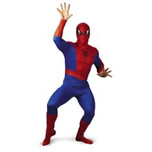 Picture of Marvel Spider-Man Adult Costume