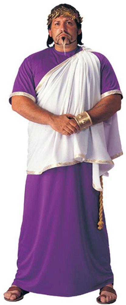 Picture of Julius Ceaser Costume