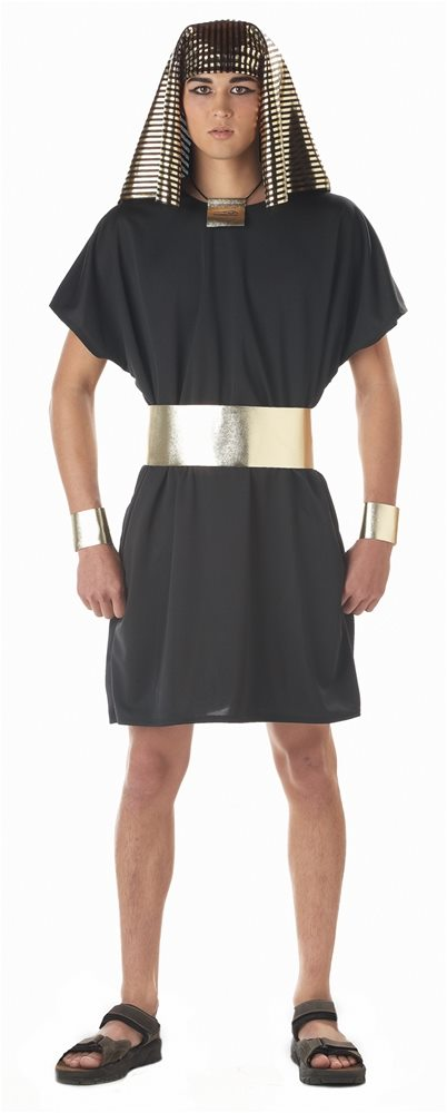 Picture of Black King Pharaoh Adult Mens Costume