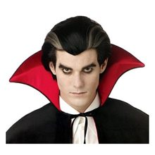 Picture of Modern Vampire Black and Grey Mens Wig