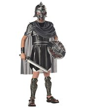 Picture of Gladiator Child Costume