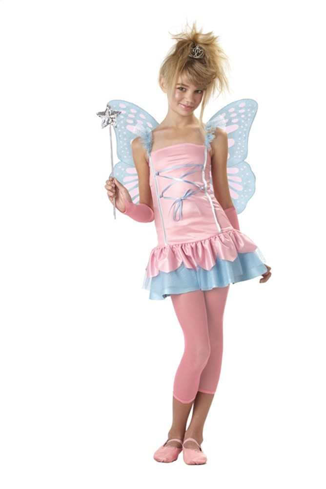 Picture of Fairy Princess Tween Costume