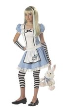 Picture of Alice in Wonderland Tween Costume