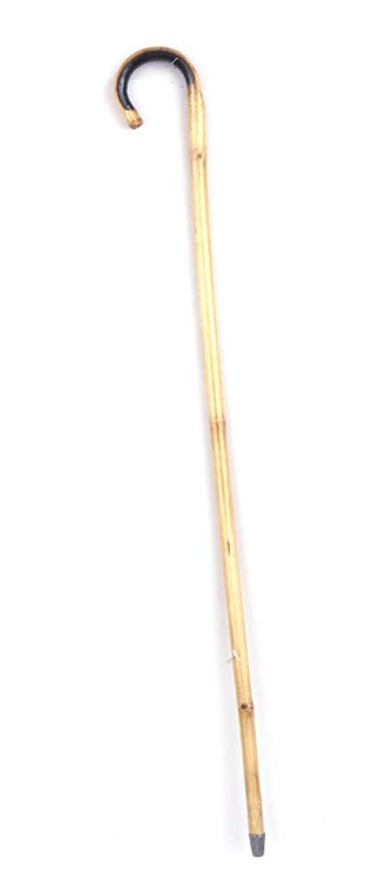 Picture of Bamboo Cane Thick