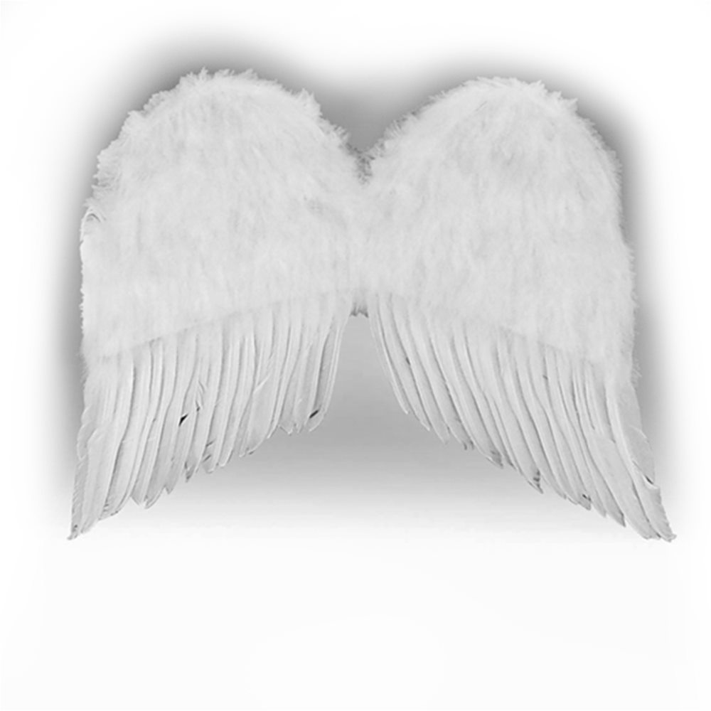 Picture of Feather Wings 22 Inches White