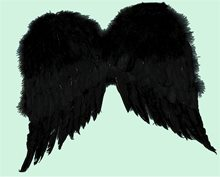 Picture of Feather Wings 36 Inches Black