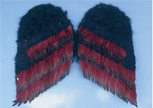 Picture of Gothic Wings 36 Inches