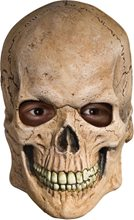 Picture of Crypt Skull Mask
