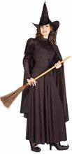 Picture of Classic Wicked Witch Adult Womens Costume