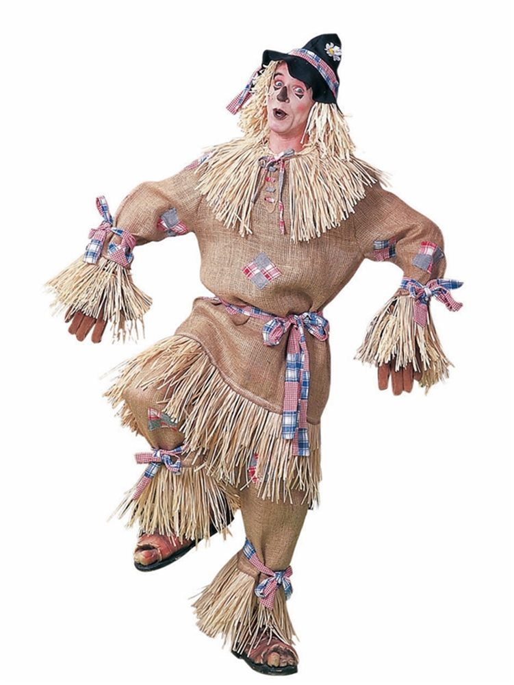 Picture of Scarecrow Deluxe Adult Costume