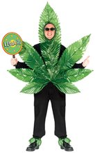 Picture of Ganja Leaf Adult Costume