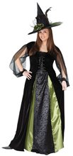 Picture of Goth Maiden Witch Adult Womens Plus Size Costume
