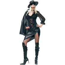 Picture of Sexy Mystery Hero Adult Womens Costume
