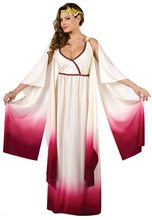 Picture of Venus Goddess of Love Adult Womens Costume