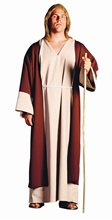 Picture of Shepherd Adult Mens Costume