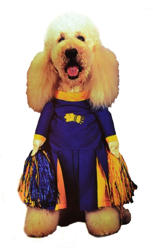 Picture of Pom Pom Pet Costume
