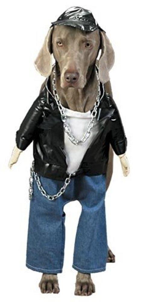 Picture of Biker Dog Costume
