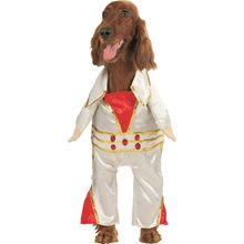 Picture of Rock Star Pet Costume