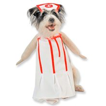 Picture of Nurse Pet Costume
