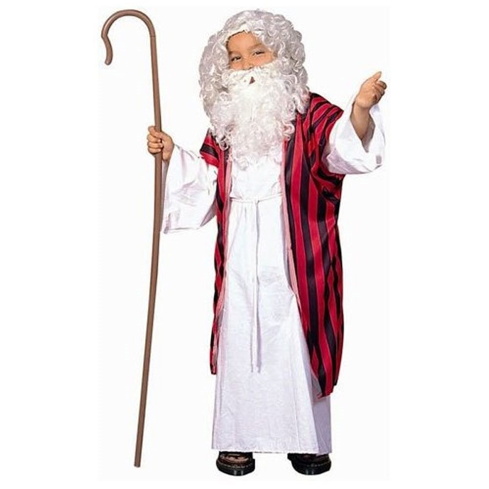 Picture of Moses Child Costume