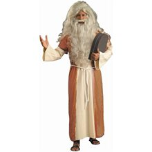 Picture of Moses Adult Mens Costume