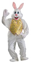 Picture of Easter Bunny Deluxe Adult Unisex Costume