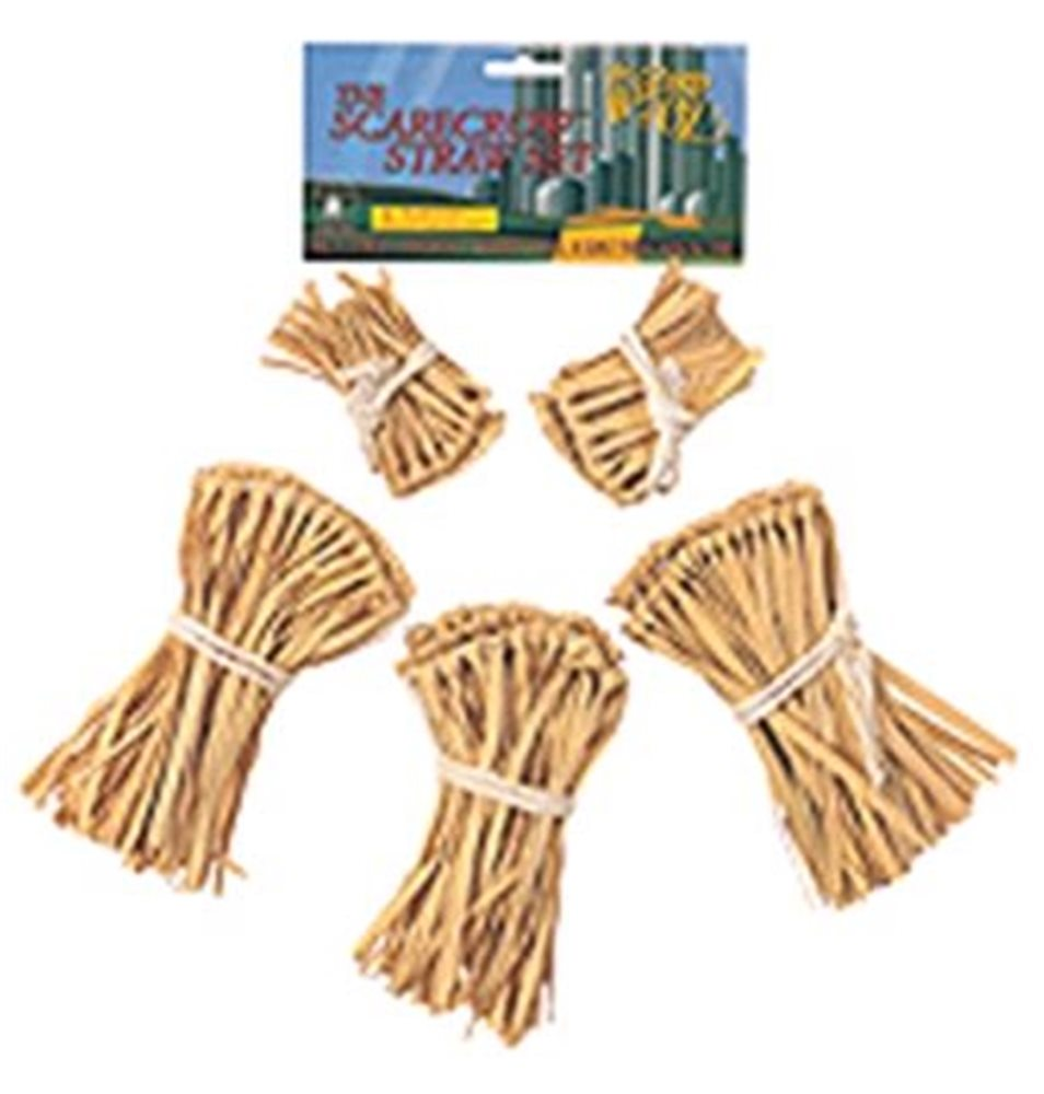 Picture of Wizard Of Oz Straw Kit