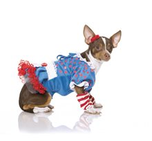 Picture of Rag Dog Pet Costume