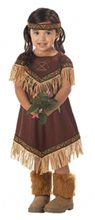 Picture of Lil Indian Princess Toddler Costume