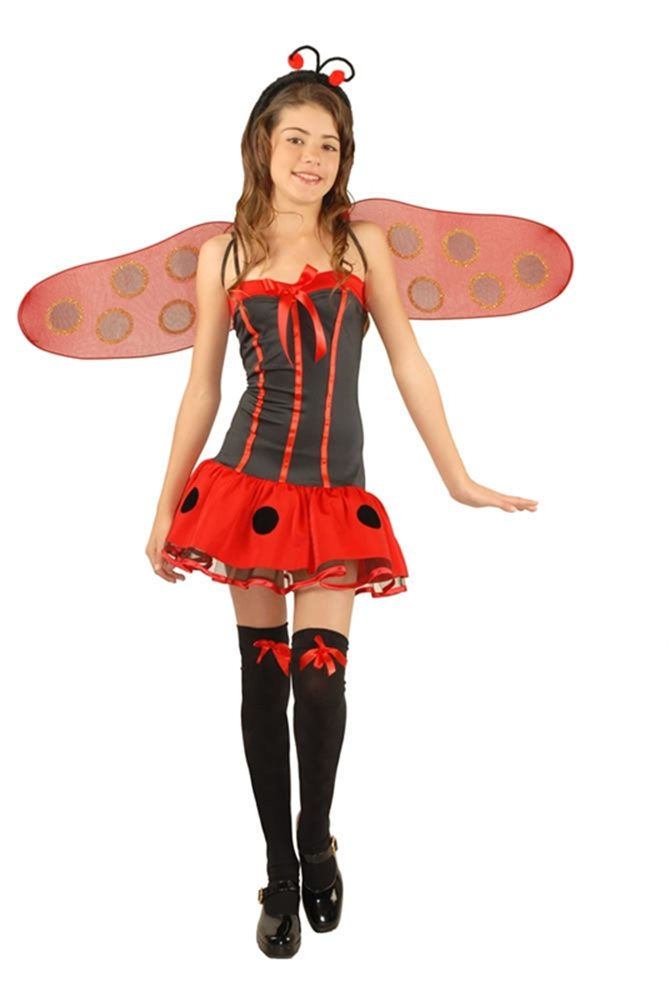 Picture of Lady Bug Girls Costume