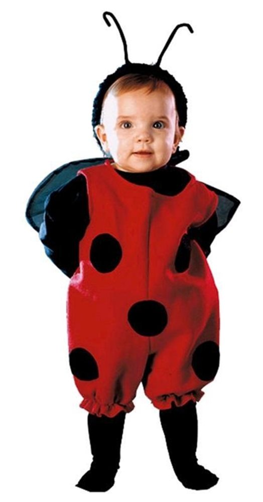 Picture of Little Lady Bug Infant Costume