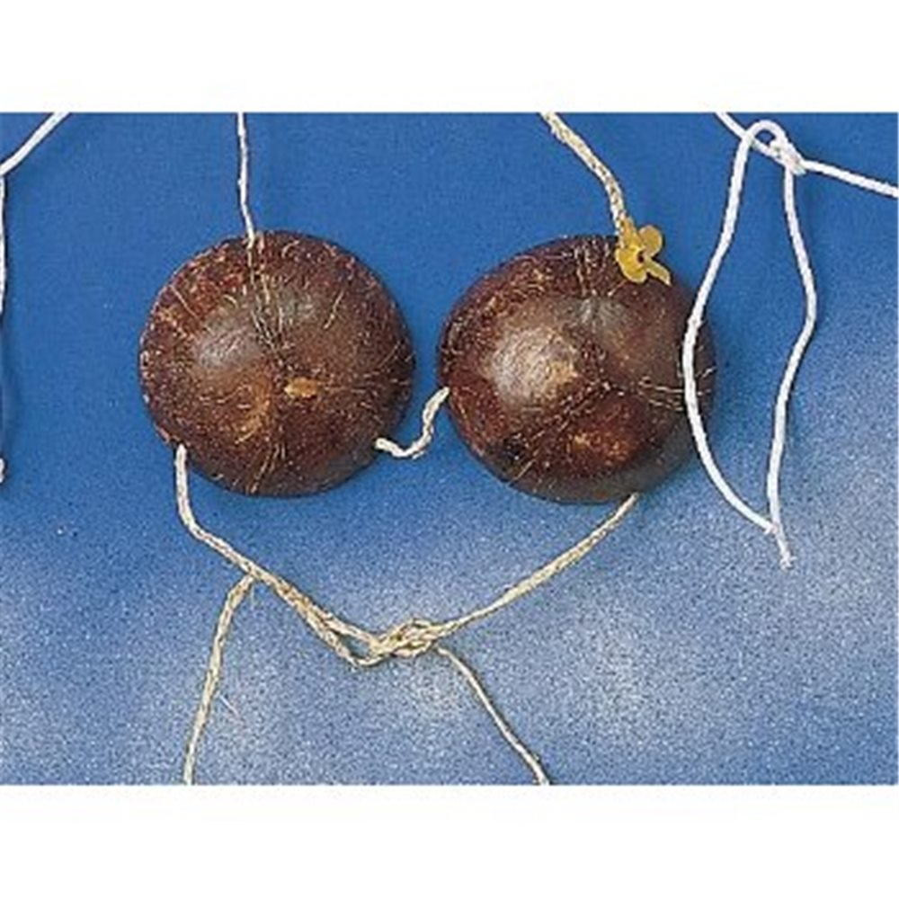 Picture of Coconut Bra
