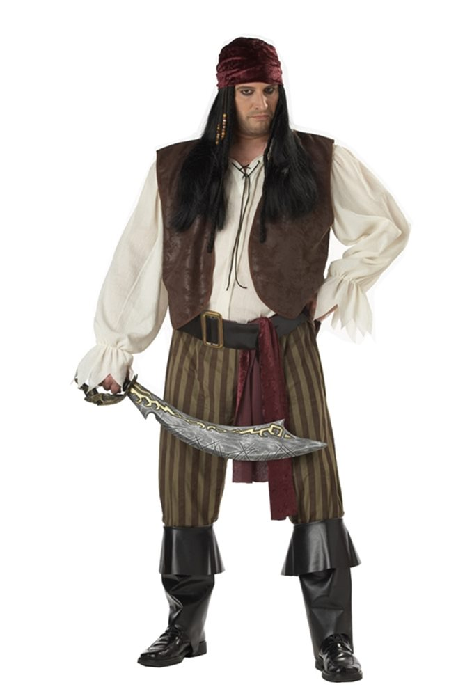 Picture of Rogue Pirate Plus Size Adult Mens Costume