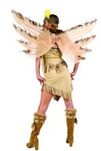 Picture of Navajo Indian Wings