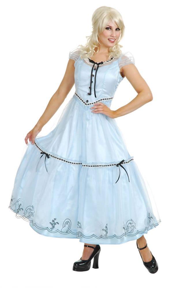 Picture of Alice in Wonderland Movie Costume