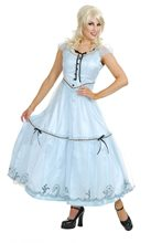 Picture of Alice in Wonderland Movie Costume