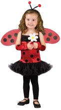 Picture of Cute Lady Bug Toddler Costume