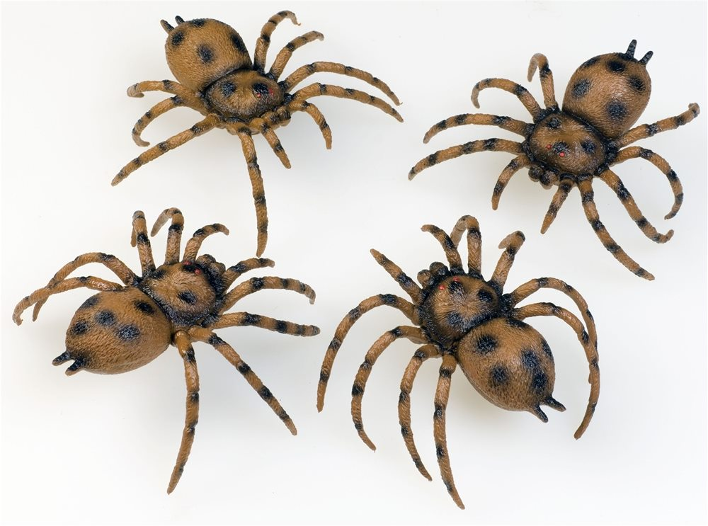 Picture of Bag of Spiders