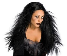 Picture of Dark Ages Adult Wig