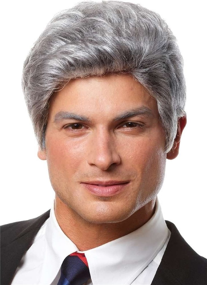 Picture of Mr. President Grey Adult Wig