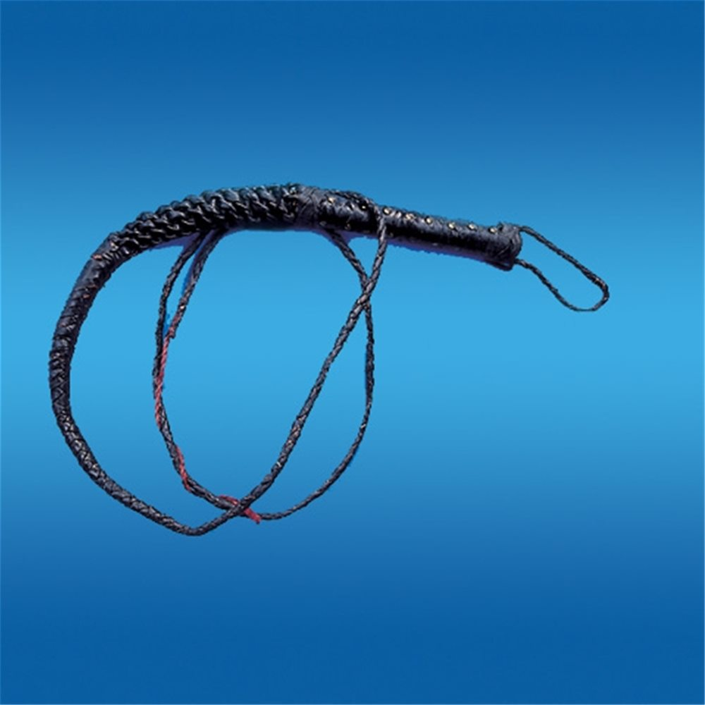 Picture of 9ft Bull Whip
