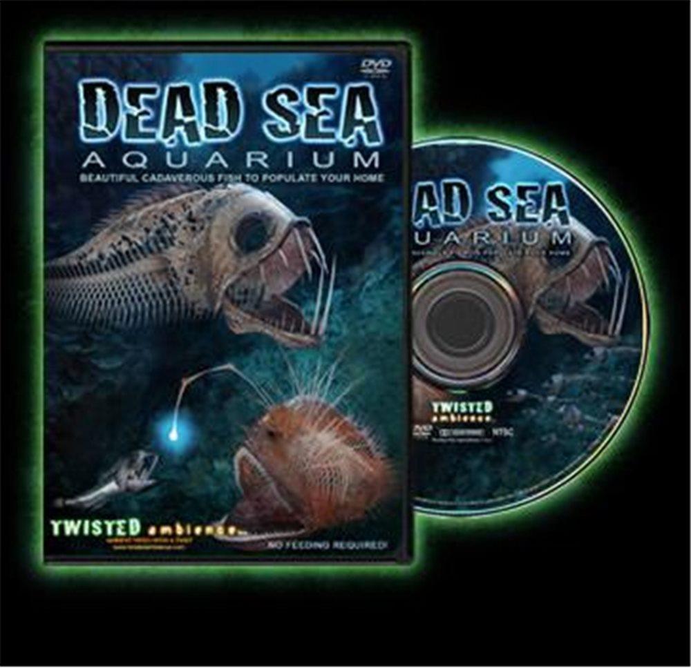 Picture of Dead Sea Aquarium DVD