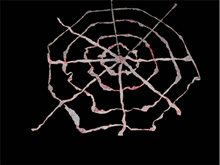 Picture of Bloody Gauze Spiderweb Prop 9ft